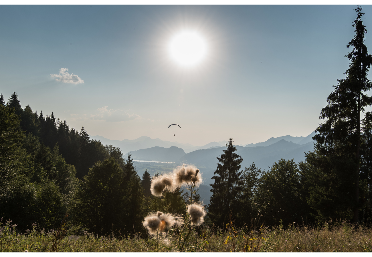 Bergbahnen HochKssen - Home | Facebook